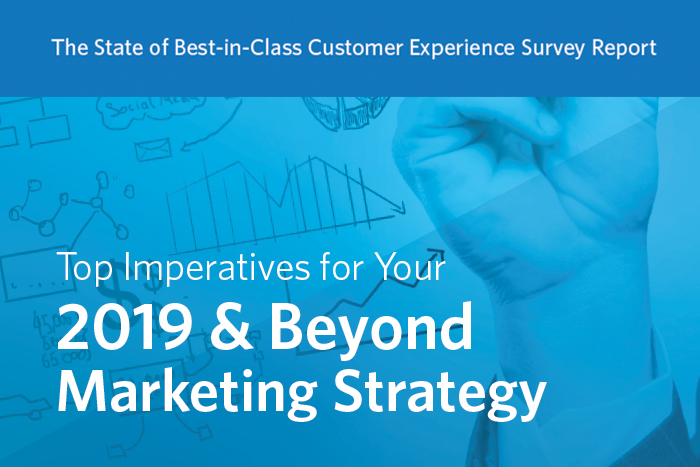 The State of Best-in-Class Customer Experience Survey Report: Top Imperatives for Your 2019 & Beyond