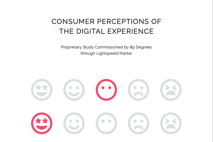 Consumer Perceptions of the Digital Experience